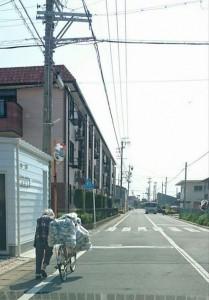 Qual a real vida que os brasileiro vivem no Japão em 2017?